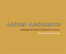 "<a href=""mailto:animal_ambulance@goggaconnect.co.za "" style=""color:#EF7423;"">Email</a>"