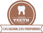 Strong Teeth & Bones for Adult Dogs