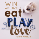 Eat Play Love Purrrmotion Winners