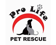 "<a href=""mailto:prolifepetrescue1@gmail.com"" style=""color:#EF7423;"">Email</a>"