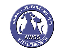 """<a href=""""mailto:kennels@awss.co.za"""" style=""""color:#EF7423;"""">Email</a>"""