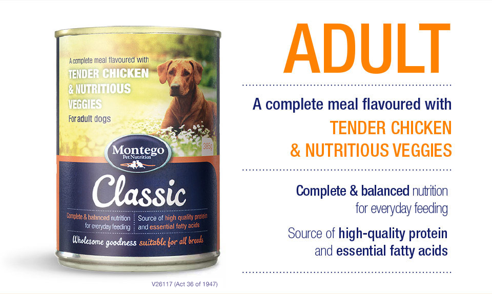 Adult Wet Food