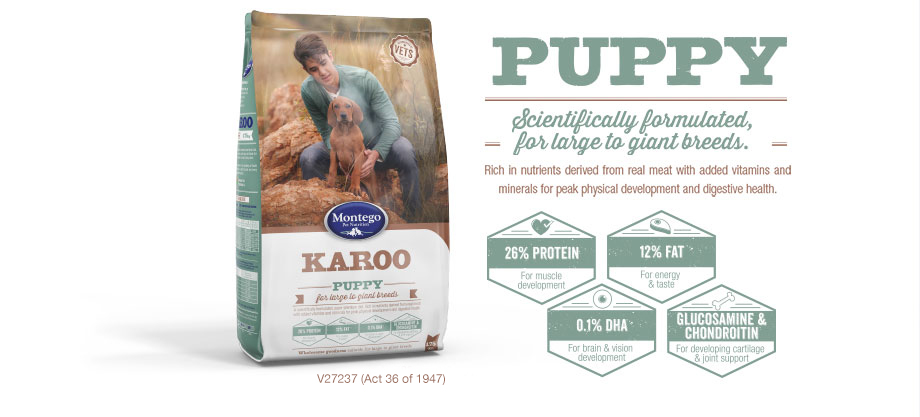 Large to Giant Breed Puppy Food