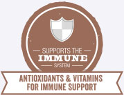 Support Immune Systems for Senior Dogs