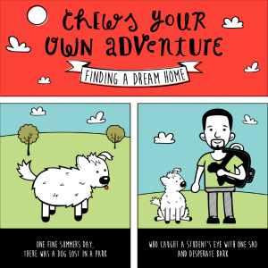 CHEWS YOUR OWN ADVENTURE