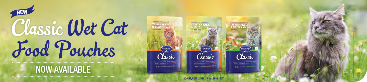 01641-MTGO-CAT-POUCHES-WEBSITE-BANNER-R-V2