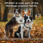 Montego Acquires WUMA!