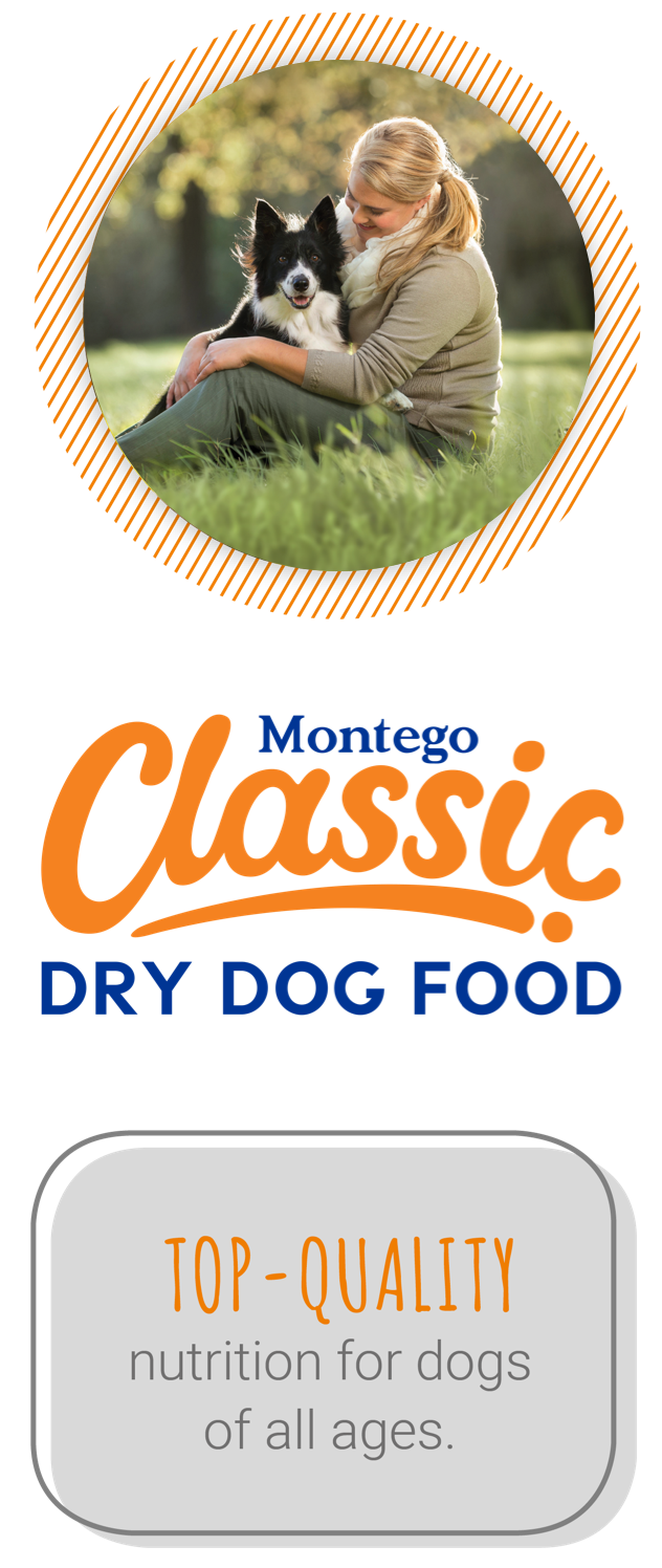 Classic for dogs
