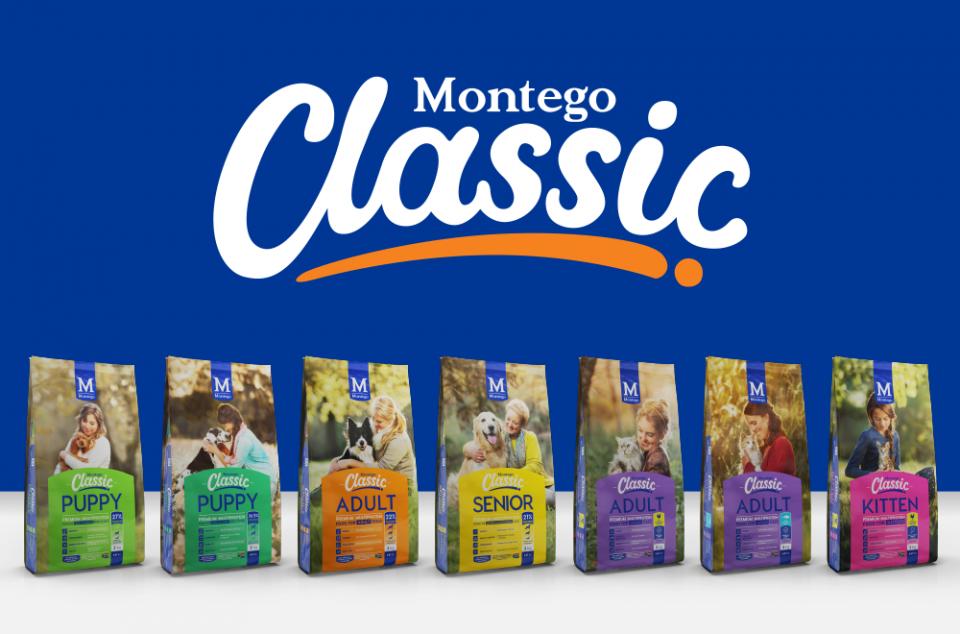 Blog - Montego Classic